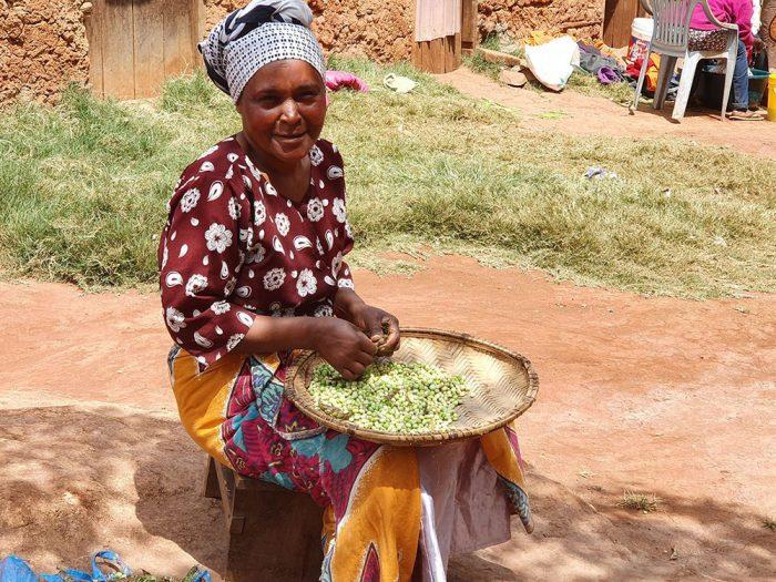 על תרבות מזרח אפריקה 1