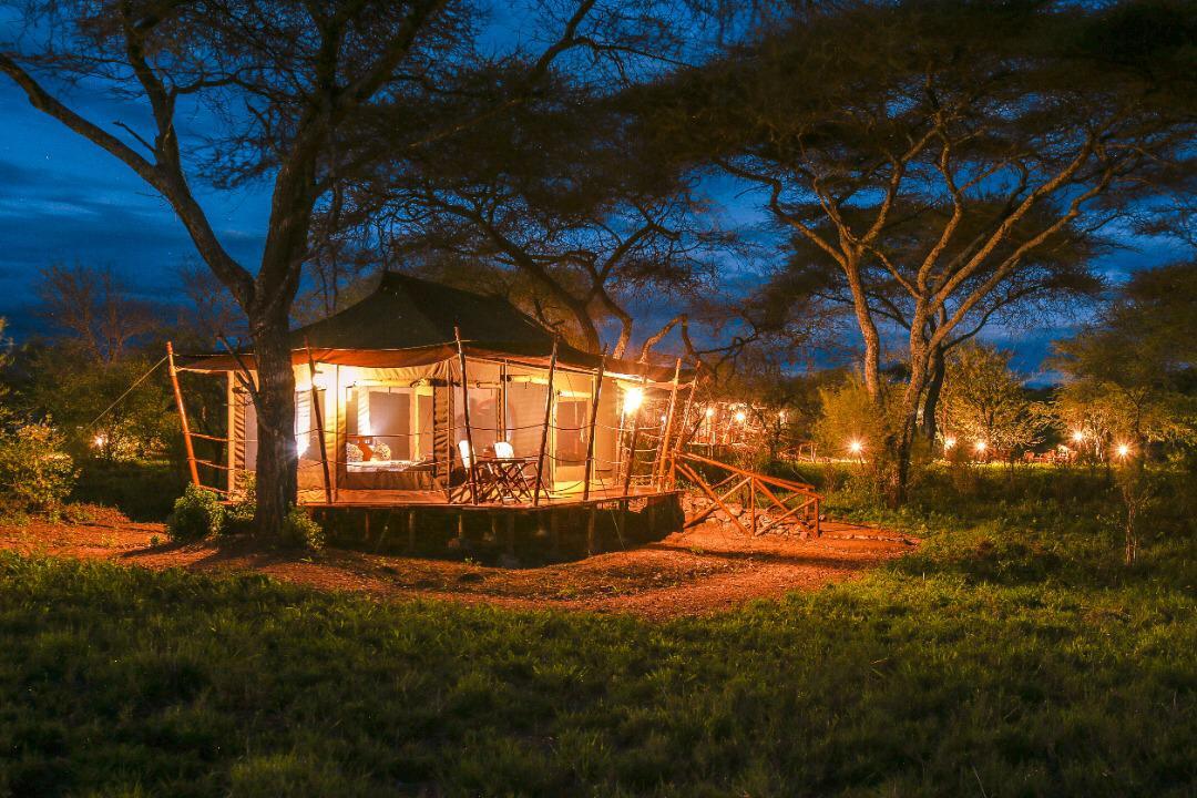 מטיילים עם רייצ'ל - טיול זוגי לאפריקה