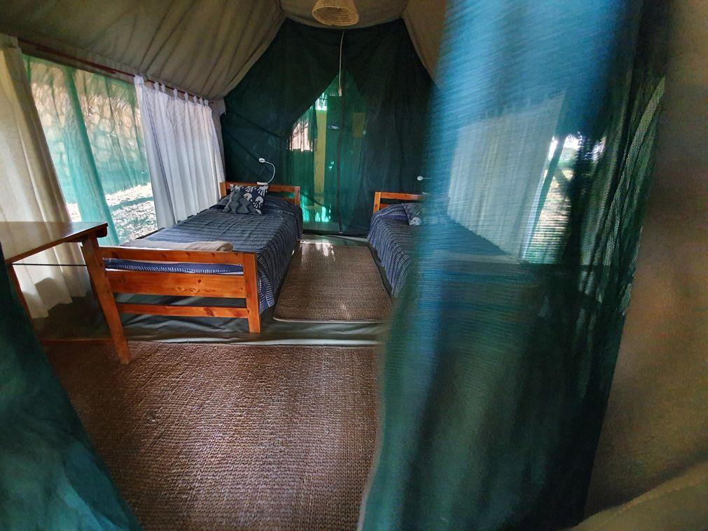 טיול מאורגן שמורת טרנגירי, טנזניה