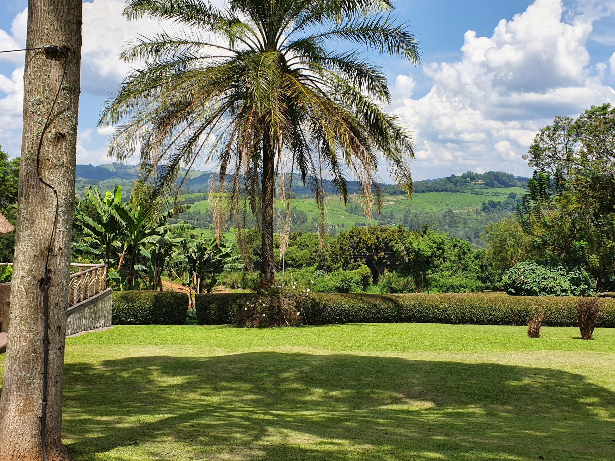 Kibaale, טיול מאורגן באוגנדה