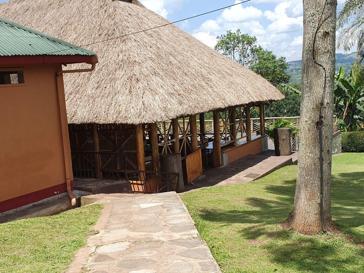 סאפרי באוגנדה