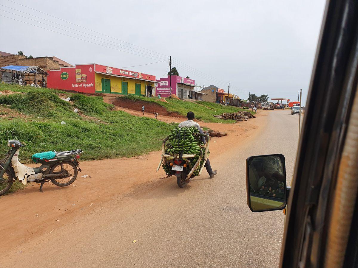 טיול מקומי באוגנדה- לטייל עם רייצ'ל