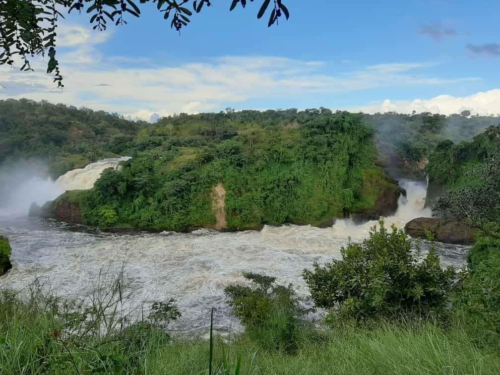 שמורת מפלי מורצ׳יסון באוגנדה