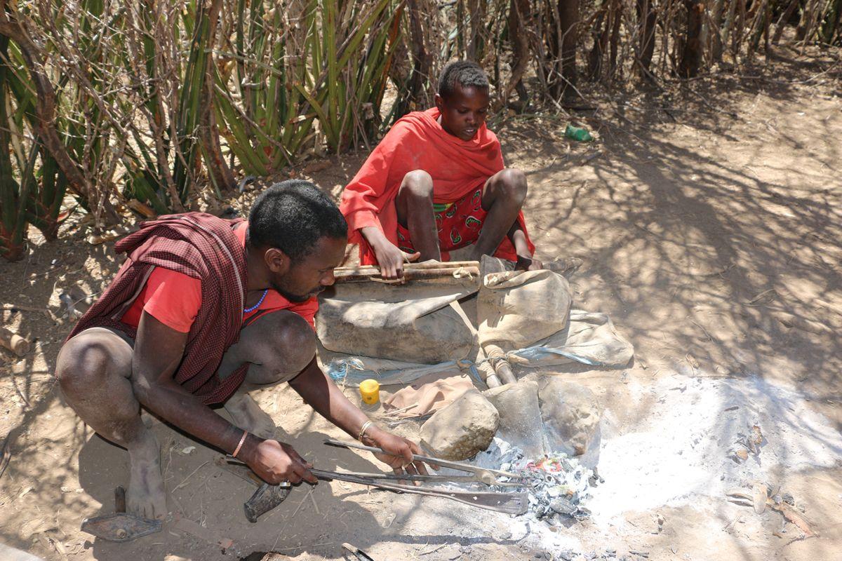 טיולי ספארי בטנזניה