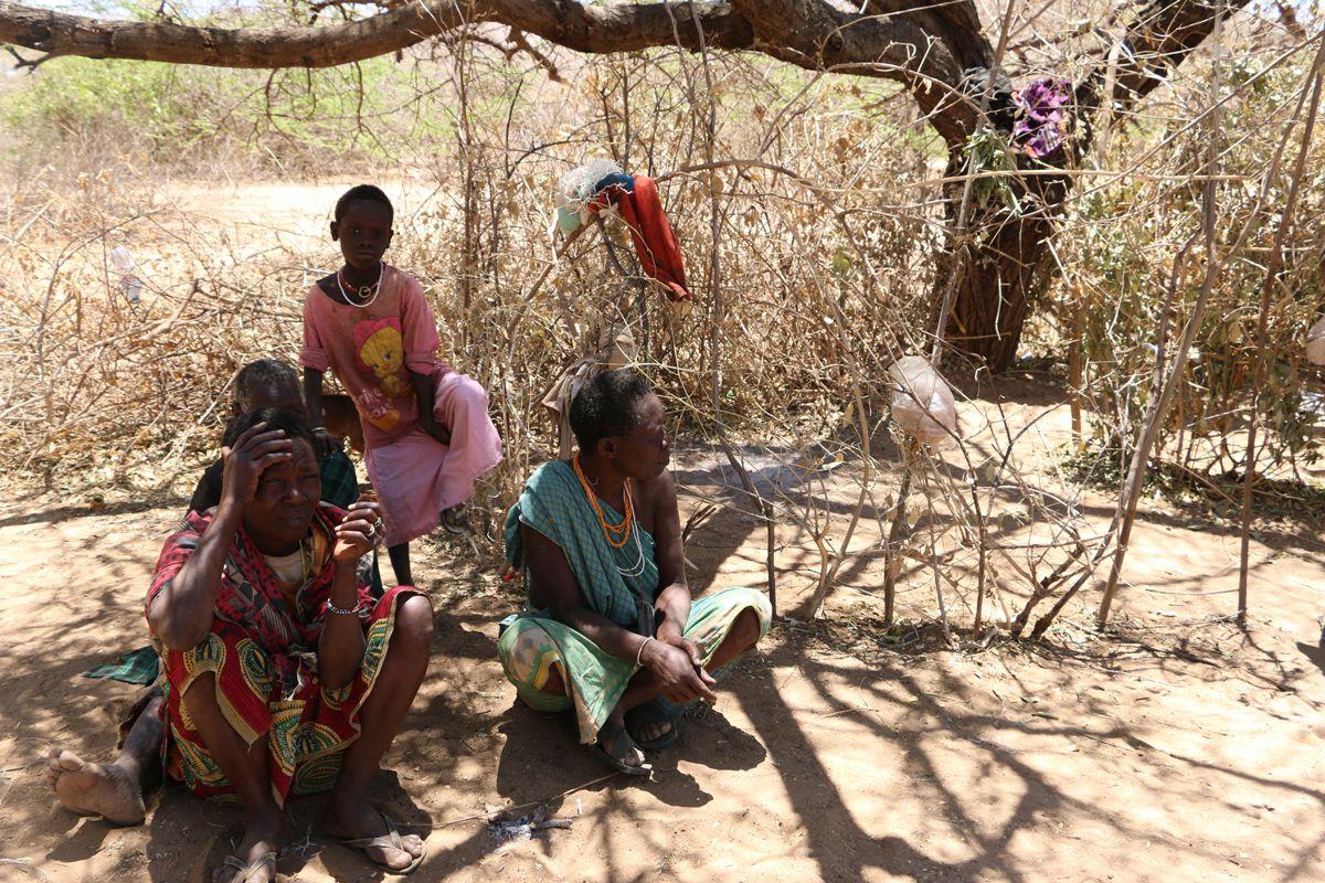 טיולי תרבות וספארי בטנזניה
