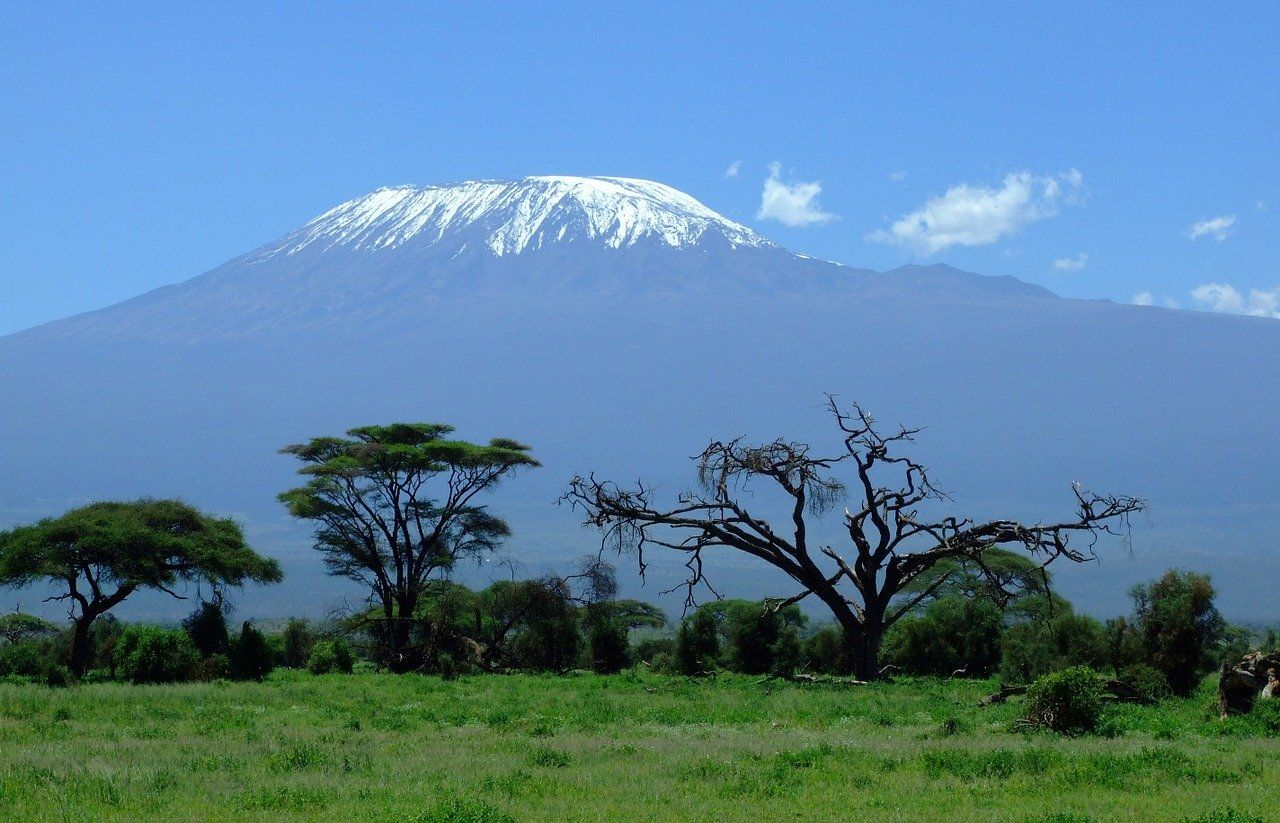 טיול לאפריקה - הר קלימנג'רו