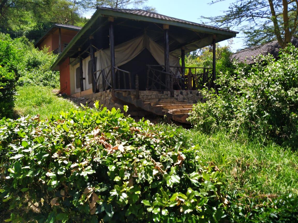 לודג׳ בשמורת הסאפרי בקניה