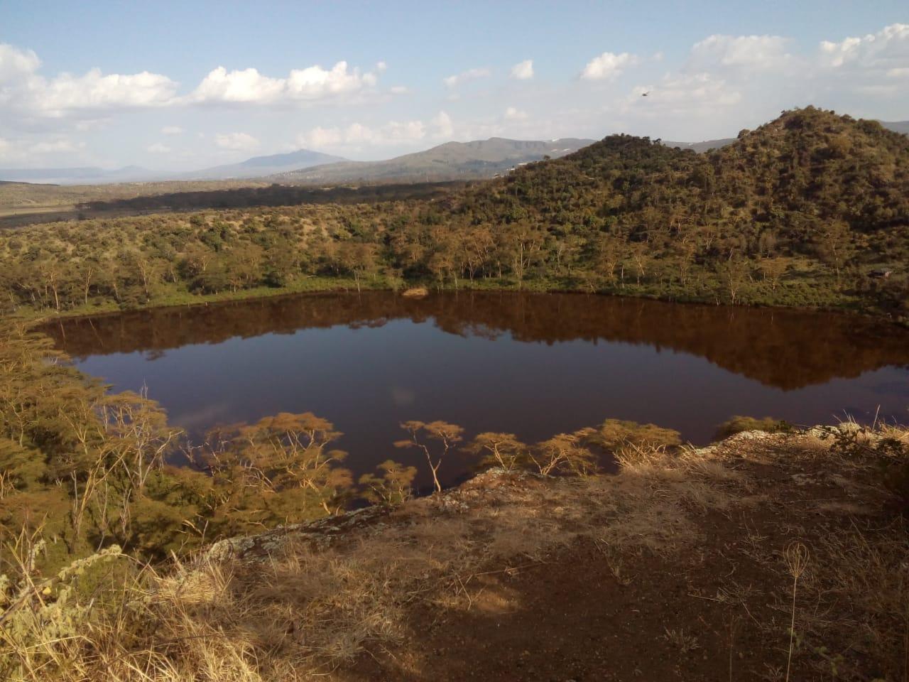 טיול בקניה - תמונות