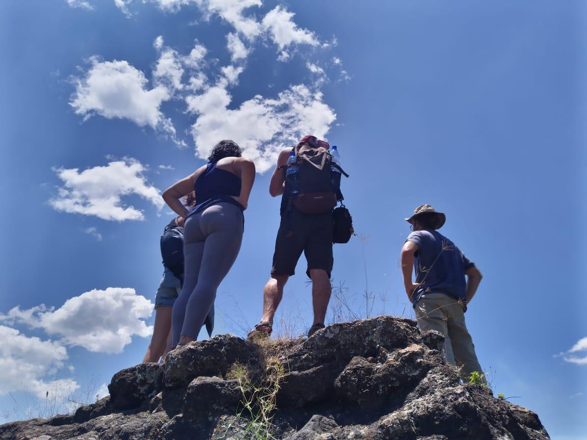 טיול ספארי מאורגן לקניה