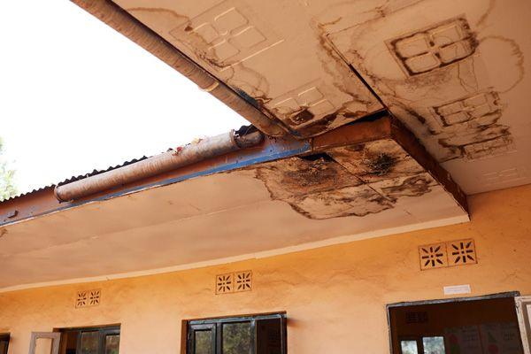 תיקון מבנים באפריקה - התנדבות