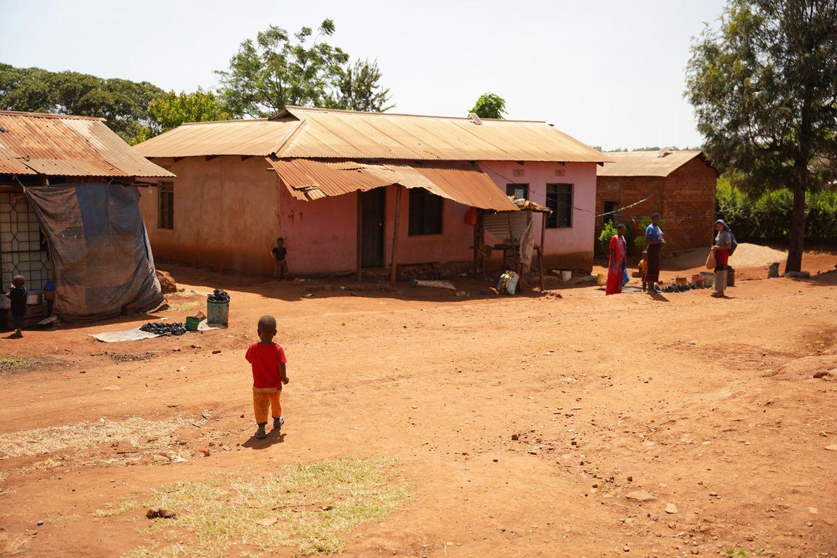 התנדבות האפריקה- משלחת הראל