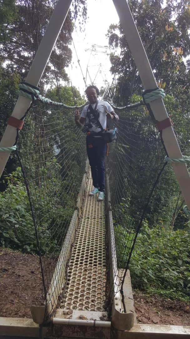 טיול הקאנופי טרייל יער ניונגווה ברואנדה