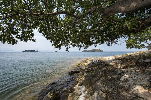 אגם קיוו