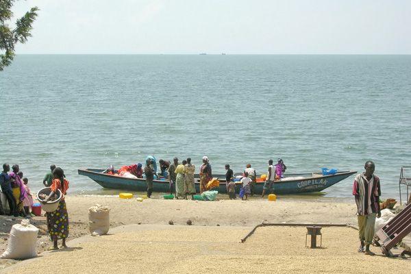 סירת דייגים לחופי אגם קיוו